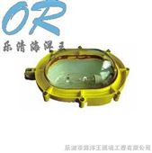 海洋王-BFC8920 BFC8920 BFC8920
