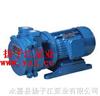 SK-0.15直聯水環式真空泵