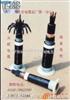 铠装控制电缆KVV22,KVV32  多芯电缆