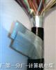 铠装阻燃电缆  WDZ-HYA23